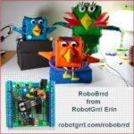 RoboBrrd from RobotGrrl Erin